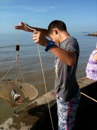 Pêche à la crevette ....