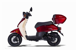 ZNEN 50 Scooter