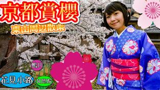 2017年京都景點區賞櫻 祇園花見小路