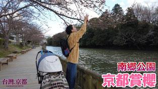 【京都賞櫻】2019 京都・櫻花季系列 南郷公園 「亀山城」護城河外圍