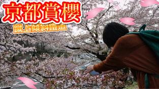 京都賞櫻2018 蹴上傾斜鐵道