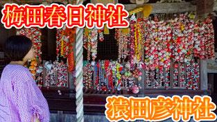 【日本寺廟遊】京都旅游攻略  梅田春日神社・猿田彦神社