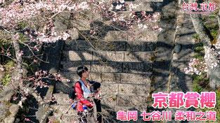 【京都賞櫻】2019・京都 櫻花開花情報更新 - 龜岡 七谷川 柔和之道