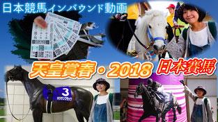 日本賽馬體驗 京都競馬場 2018年春季天皇賞