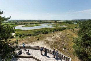 dunes-parc-marquenterre-nature-baie-de-somme-picardie-hauts-de-france