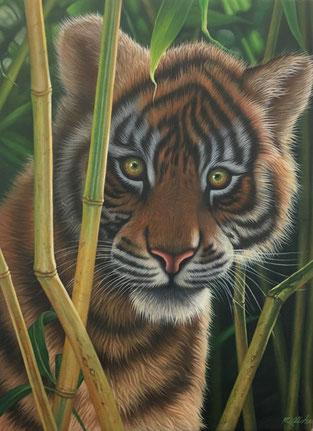 Schöne Tierbilder, herzige Tierbilder, niedliche Tierbilder, junger Tiger