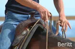 Reinhard Hochreiter bietet Beritt für Reining-Pferde.