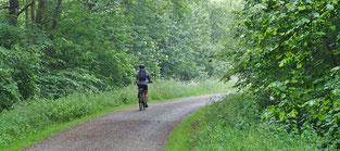 Noch ist der Himmel wolkenverhangen, aber die Fahrt durch den feuchten Wald tut gut