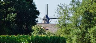 Windmühlen dürfen nicht fehlen