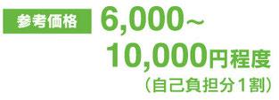 6000〜10000円程度