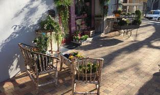livraison-gratuite-fleuriste-grossiste-aubignan-roses-ruban-fleurs-naturelles-naturel