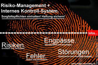 Risiko-Consulting: Controlling und Risiko-Management für KMU-Inhaber
