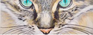 Ami´s Art - Tierportraits wie echt