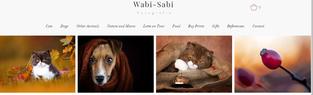Wabi-Sabi Fotografie