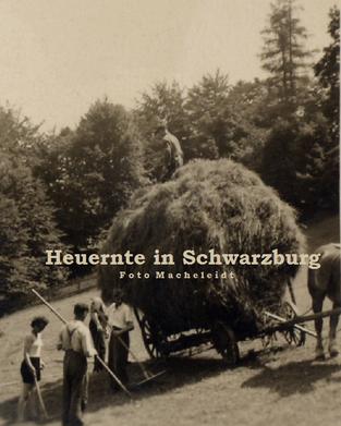 Thüringer Schiefergebirge in Deutschland- Heuernte um 1900