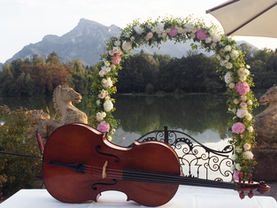 Cello am See