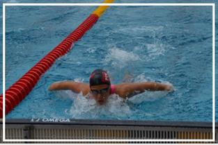 Schwimmen SLZ St.Pölten