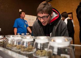 ofertas semillas marihuana barcelona, oferta marihuana dispensario
