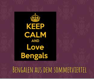 Bengalen aus dem Sommerviertel