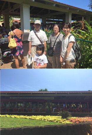 ハワイ オアフ島 ドールパイナップルプランテーション オプショナルツアー 専用車での貸切観光 チャーター 日本語タクシー