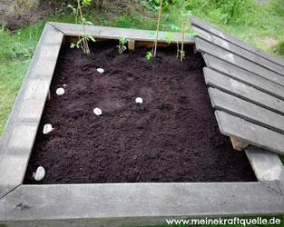 Aus alt mach neu, alternatives Blumenbeet, Blumenbeet selbst bauen, Sandkasten umfunktionieren, Kraftquelle