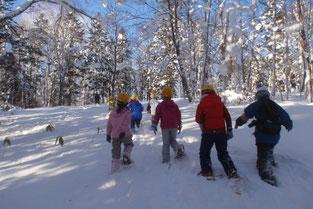 冬の森の探検