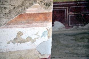 OmoGirando la Villa di Livia