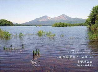 自然音CD・音の風景No.12 裏磐梯の春(ニゴイの産卵)