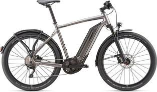 Giant Quick E+ Speed-Pedelec / Trekking e-Bike 2020
