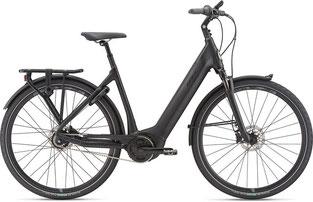 Giant Dailytour E+ Trekking e-Bike 2020