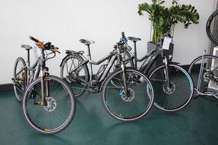 Haibike e-Bike xduro und sduro Ulm