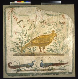 Insegna della Fenice, intonaco dipinto (Pompei, inv. 41671)