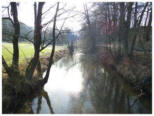 Blick von der alten Röder-Brücke flussaufwärts, zurück zur Tobiasmühle