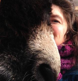 """vorming """"animal assisted therapy"""" praktijkvorming bijscholing therapie met dieren"""