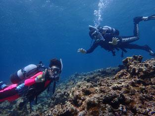 石垣島でのんびりダイビング「仲良し親子でダイブ」
