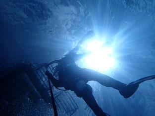 石垣島でのんびりダイビング「浮上」