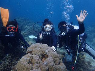 石垣島でのんびりダイビング「リハビリダイブ」