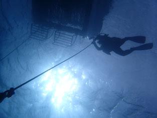 石垣島でのんびりダイビング「ロープで潜降」