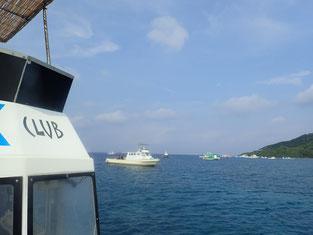 石垣島でのんびりダイビング「大崎エリア」