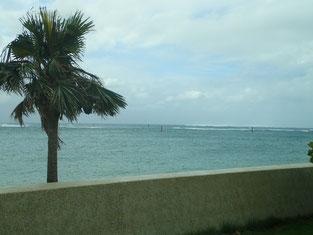 石垣島でのんびりダイビング「台風21号接近中」