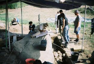 Fouille de la carrière de la Flâtrière à la Boissière de Montaigu