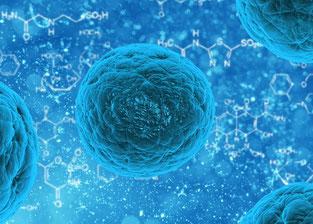 Markstarの豆知識 iPS細胞 リハビリ関連情報2