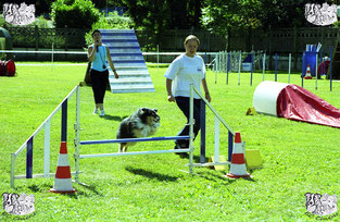 ec chiens Laudine Roussy dresseur canin et comportementaliste chien en concours d'agility dans un club canin