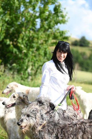 Borzois and Deerhounds..., FCI/VDH/DWZRV borzoi deerhound  Kennel in Germany..., registered and protected borzois and deerhound breeding in Bauler/GER!