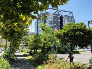 七本松通から見たKRP4号館