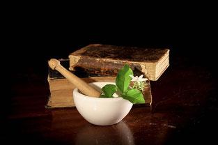 田七人参は、古くから最高級の漢方薬として重用されてきました。
