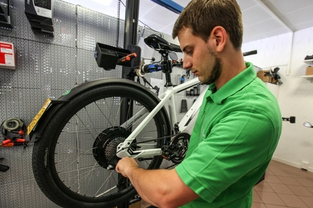 e-Bikes: Wartung, Inspektion und Software Update