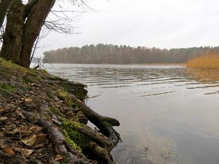 Pagelsee Baden Urlaub am See
