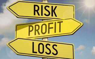 summerlight_investment criteria