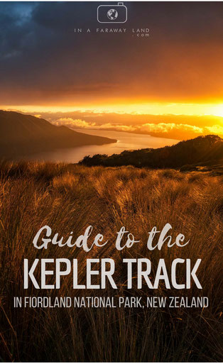You would like to hike the Kepler Track in New Zealand but don't know where to start with planning? In this article I am sharing in detail how to make bookings, organise transport and what the best highlights of the Kepler track are.